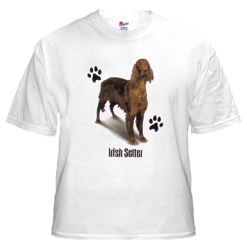 Irish Setter - T Shirt - Profile